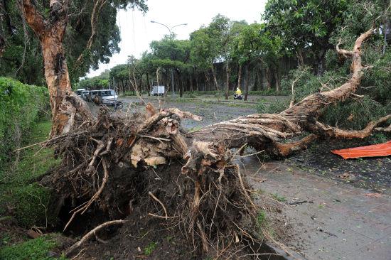 强台风登陆台湾致2人死亡54人受伤